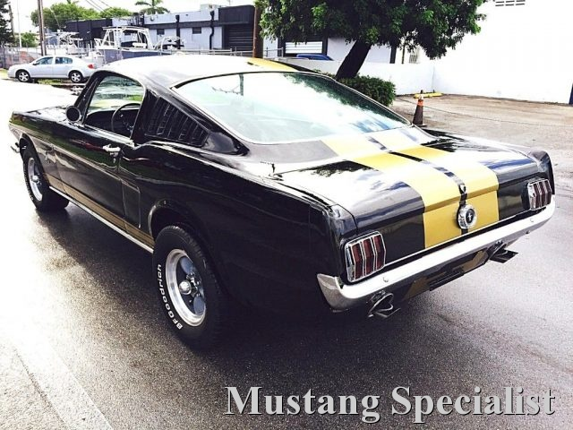 FORD Mustang Fastback 289 Shelby Tribute Cambio Man 4 Marce Immagine 2