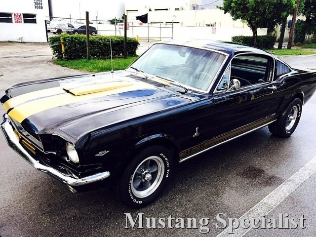 FORD Mustang Fastback 289 Shelby Tribute Cambio Man 4 Marce Immagine 0