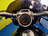 HARLEY-DAVIDSON 883 Sportster Custom 883