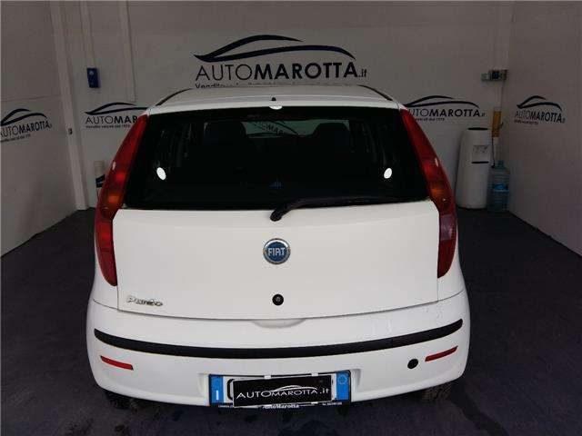 FIAT Punto 1.2 5P Dynamic RILASCIAMO N.TELAIO X VERIF. KM Immagine 4