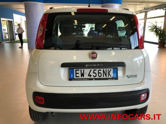 auto usate private torino »  FIAT Panda