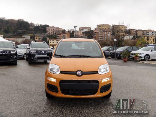 FIAT Panda New 1.2 69 Cv Easy ITALIANA Immagine 1