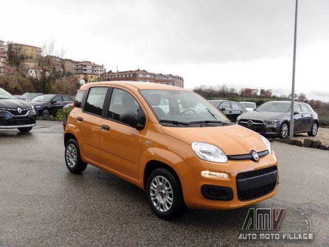 FIAT Panda New 1.2 69 Cv Easy ITALIANA Immagine 2