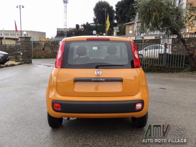 FIAT Panda New 1.2 69 Cv Easy ITALIANA Immagine 4