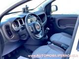 FIAT Panda Cross 0.9 TwinAir Turbo 4x4