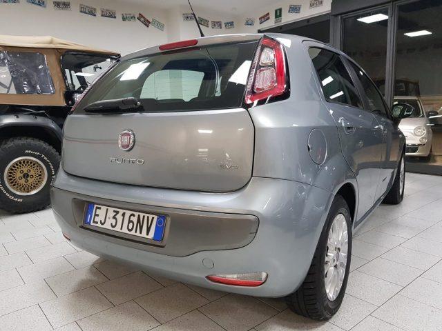 FIAT Punto Evo 1.2 5 porte S&S Active Immagine 4