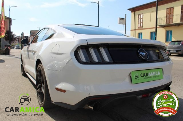 FORD Mustang Fastback 2.3 EcoBoost Immagine 4