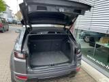 LAND ROVER Range Rover Evoque 2.0 TD4 180 CV 5p. HSE Dynamic-60MESI GARANZIA