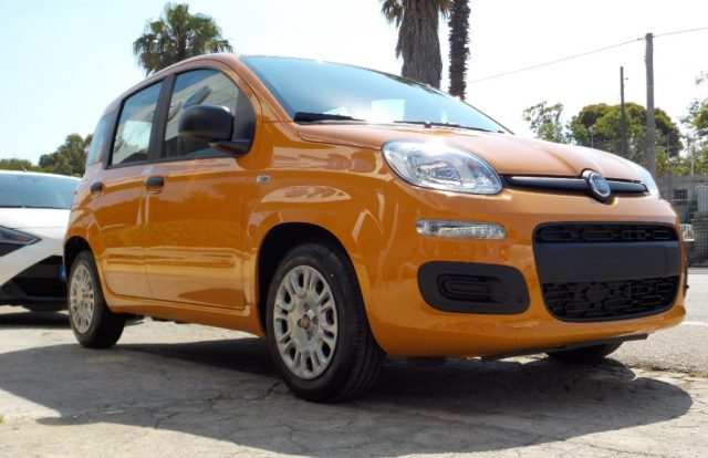 FIAT Panda 1.0 FireFly S&S Hybrid Easy Immagine 2