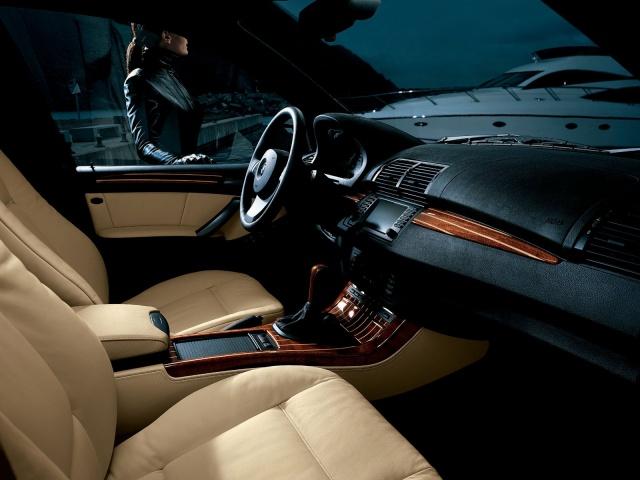 BMW X5 4.4i cat V8 MARITIME INDIVIDUAL Xeno Navi PanoRoof Immagine 3