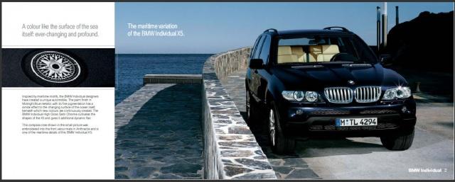 BMW X5 4.4i cat V8 MARITIME INDIVIDUAL Xeno Navi PanoRoof Immagine 2