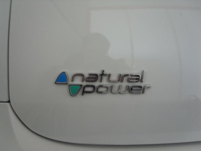 FIAT Punto Evo 1.4 5 porte Blue&Me Natural Power Immagine 1