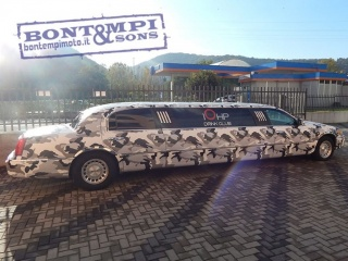 Lincoln town car usato limousine