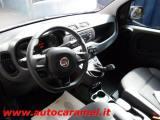 FIAT Panda 1.2 Easy Km0 07'19  Ruotino