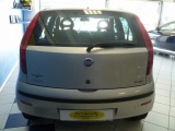 Fiat Punto 1300 Ddis 5 Porte Per Neopatentati - immagine 2