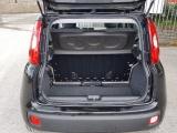 Fiat Panda New 1.2 69 Cv Lounge 5°posto+ruotino+fendi - immagine 3