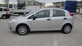 Fiat Grande Punto 1.2 5 Porte Per Neo Patentati - immagine 4