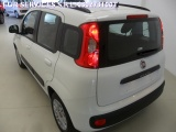 Fiat Panda New Panda 1.2 Lounge - immagine 3