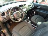 Jeep Renegade 1.6 Mjt 120 Cv Limited Navi 6.5 - immagine 2