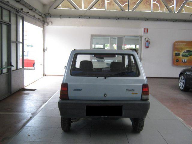 FIAT Panda 1100 i.e. cat Young Immagine 3