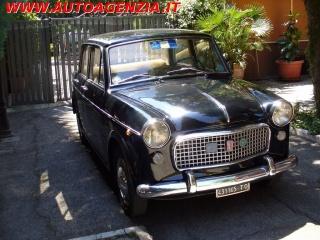 Fiat 1100 usato special