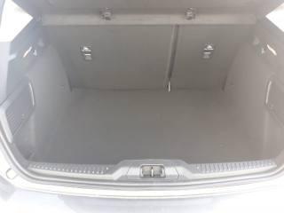 FORD Focus 1.5 EcoBlue 120 CV 5p. Titanium Km 0