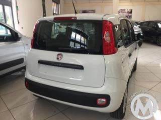 FIAT Panda 1.3 MJT 95 CV S&S Easy Km0 11/2017 Km 0