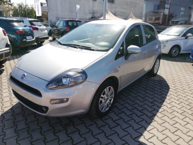 Fiat Punto usata 1.2 8V 5 porte Lounge a benzina Rif. 10051338