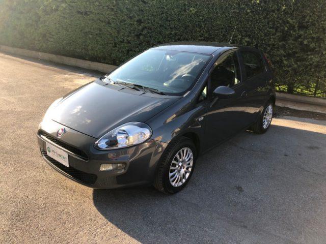 Fiat Punto usata 1.2 8V 5 porte Street a benzina Rif. 10142803
