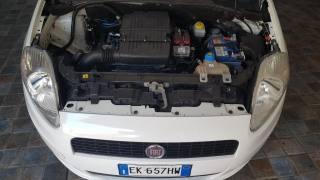 FIAT Grande Punto 1.4 5 Porte S&S Dualogic Actual Usata