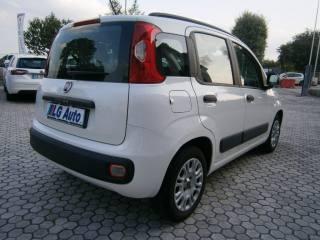 FIAT Panda 1.2 Easy Usata