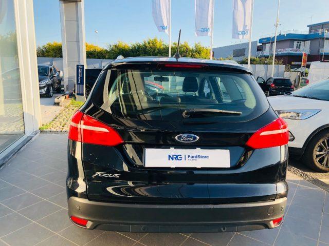 Ford focus  - dettaglio 2