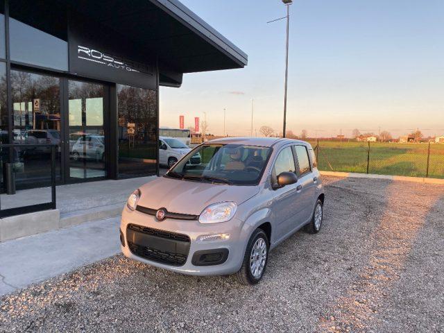 Fiat Panda km 0 1.2 Easy ANCHE PER NEOPATENTATI a benzina Rif. 11686426