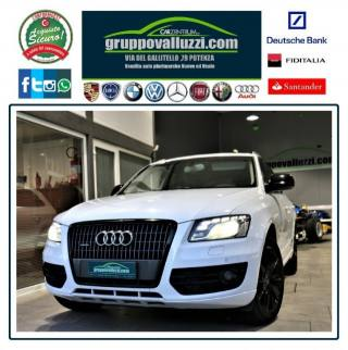 AUDI Q5 2.0 TDI 143 CV Advanced Plus Xenon/Navi/ Cruise Usata