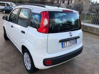 FIAT Panda 1.3 MJT S&S PARI AL NUOVO Usata