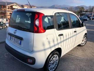 FIAT Panda 1.3 MJT S&S KM 49.000 UNIPROPRIETARIO Usata