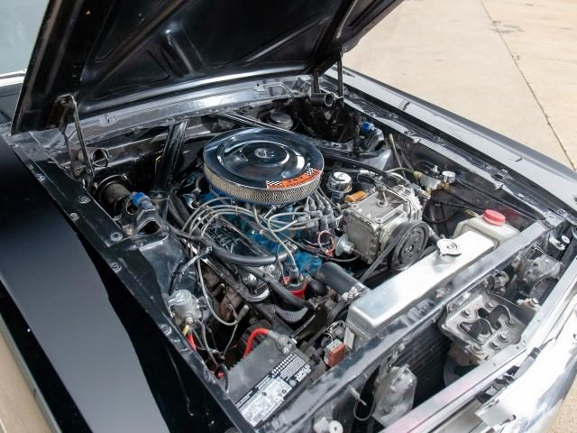 Immagine di FORD Mustang v8