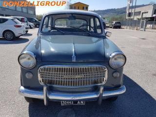 FIAT 1100 Berlina Usata