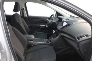 FORD Kuga 1.5 TDCI 120 Cv. 2WD Powershift Business Usata
