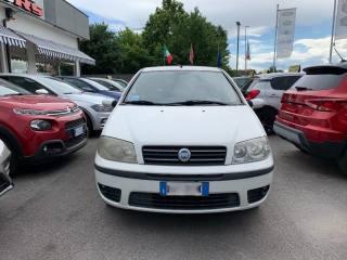 FIAT Punto 1.2 3 Porte Active Usata