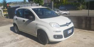 FIAT Panda 1.3 MJT S&S Easy Van 4 Posti Usata