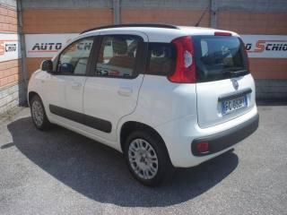 FIAT Panda 1.2 69CV MOD. LOUNGE EURO 6B ANCHE NEO PATENTATI Usata