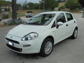 FIAT Punto 1.4 8V 5 Porte Natural Power Street KM44000 Usata