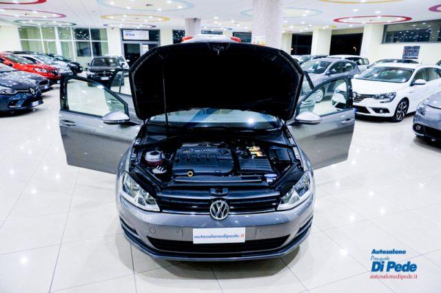 Immagine di VOLKSWAGEN Golf Variant 1.6 TDI 110 CV Business BlueMotion Tech.