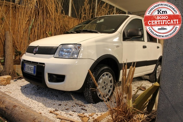 Fiat Panda usata 1.2 4x4 a benzina Rif. 4733521