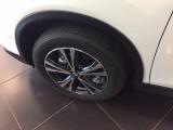 Nissan X-trail 1.6 Dci 2wd Visia Autocarro N1 4 Posti Auto Nuova - immagine 3