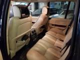 Land Rover Range Rover 3.6 Tdv8 Vogue Tagliandi Land Rover - immagine 5